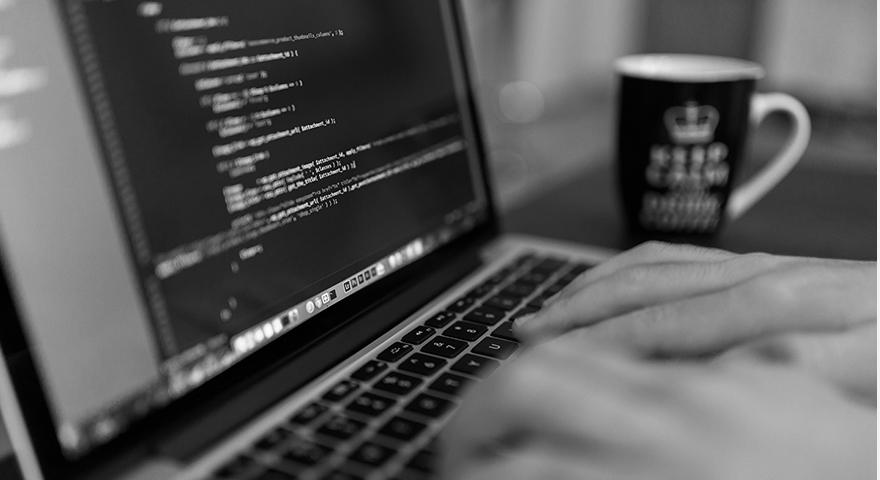 Website Programmers